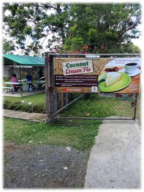 coconut cream pie-1